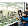 愛知県知多半島おすすめ観光スポット!えびせんべいの里!工場見学試食お土産が充実してます!