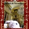 ヴェルサイユ宮殿 国王の寝室!ハネムーン旅行記2014 フランス&イタリア♪