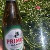 プリムス君と清流のバイカモ