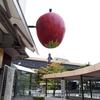 盛岡駅前に実る巨大なリンゴ。