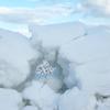 積雪と除雪