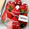 佐賀県の新品種【いちごさん】の特徴と購入レビュー。その美味しさにリピート確定!