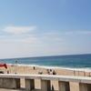 ビーチの目の前にある素敵なローカルレストランCasa da Galé