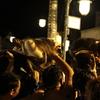 津幡町の四ツ角交差点で繰り広げられる「獅子舞頭合せ」を観戦しに行った