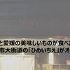 ゆっくりと愛媛の美味しいものが食べたいなら松山市大街道の「ひめいちえ」がオススメ