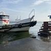 【松村渡船】都会の釣りは沖堤防で。神戸沖堤でカサゴ爆釣したお話