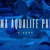 須磨海浜水族園「イルカショーのナイトライブ」が最高だった