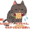 【悲報】 こんにちわ!! ネコちゃん、それやっちゃ〜お終いよ?