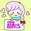 2017年12月の家計簿【11/24~12/24】