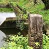 柏倉の池(仮称)(群馬県前橋)