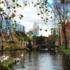 憧れの絵本の中の世界へ、水の都ブルージュ|ベルギー編