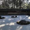 【世界遺産めぐり】謎に包まれた石庭のある龍安寺へ参拝してきました、見どころを紹介!