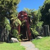 ヒネモアとツタネカイの神話の島 マコイア島へ