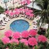 本当に泊まりたいホテル 海外編 ロイヤル ハワイアン ホテル マイラニ タワー その⑥ビーチ&プール