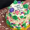 多肉植物なお誕生日ケーキとリニューアルに向けたお打ち合わせ。