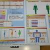 In Bodyって知ってる?筋トレ始めて3か月、アラフィフ男性の体組成計の結果は?