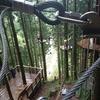 【四国旅行No.2】 徳島の祖谷のフォレストアドベンチャーで遊んでみた!