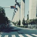 横断歩道の白と黒の間