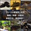 タナゴの繁殖用二枚貝の種類・特徴・お勧め・飼育方法・徹底解説!