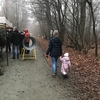 右手に幼児、左手にノコギリ…森の中のワイルドなツリーマーケット