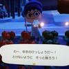 12月14日(月) あつ森のはなし 雪景色