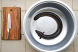 【アナコンダ級】ベトナムの巨大鰻 CA CHINHで土用の丑の日を楽しむ
