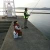 【要注意】独自ドメイン取得時と、家族で釣りに行く時の注意点
