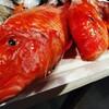 鹿児島指宿の漁師さん直送の魚たち