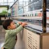 電車大好きの息子くんを東武博物館へ連れて行って遊んできました