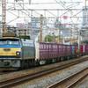 4月12日撮影 東海道線 平塚~大磯間 貨物列車4本撮影
