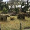 円山動物園に行ってきたので!歴史ご紹介
