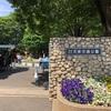 大泉交通公園!自転車の練習にいいです
