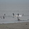 今日も夕方から波のない鵠沼で軽くフィンレスサーフィン♪