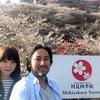 豊田市「小原四季桜まつり」へ行って来ました