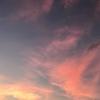 【慶應通信&その他】モチベーション向上作戦&卒論進捗状況