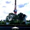 7月4日(木)『お昼の東京タワー』です🌞🗼