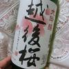 【酒好き独女の晩酌】スーパーで買える日本酒・大吟醸「越後桜」は米の旨さがググッとくるよ