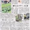 西日本新聞に「生ごみリサイクル菌ちゃん野菜作り」が詳しく掲載されました。