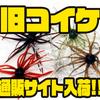 【ハイドアップ】名作ワームが復活「旧コイケ」通販サイト入荷!