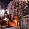夜桜が似合う、産寧坂の枝垂れを愛でる@2019