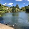 大づつみ池(三重県御浜)