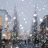閉館まであと2日… 雪の南町田「グランベリーモール」に行ってきた