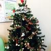 クリスマスツリーが登場!/スマイル歯科 2014/12/9