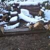 薪ストーブ原生代32 一本の樫の木からできる薪