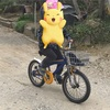【子供の成長】自転車で補助輪なしで乗れるようになった末っ子ちゃん♪
