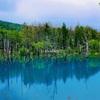【フラノ寶亭留*2】ホテルから車で30分◎絶景スポット 美瑛の青い池に行ってきた