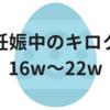 安定期突入!妊娠中のキロク【16w~22w】