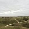 イギリスゴルフ#110|南西イングランド遠征|Saunton Golf Club - East Course|スキルもメンタルも試された