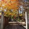 天童市 良縁に恵まれる若松寺と秋の紅葉の風景🍁