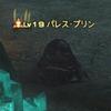 【FF14】ディープダンジョンB11階~B20階を攻略!